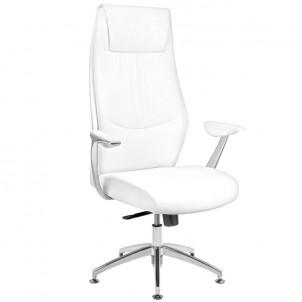 Fotel kosmetyczny Rico 184