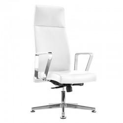 Fotel kosmetyczny Rico 156